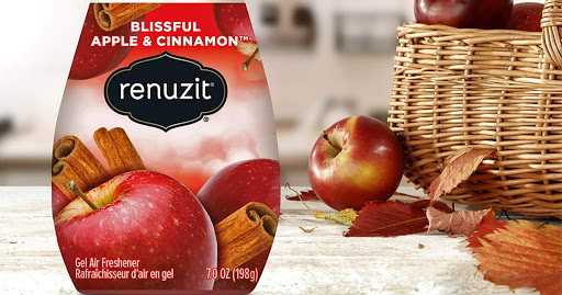 Renuzit Gel Air Freshener 12-Count Only $7 Shipped on Amazon | Just 58¢ Each