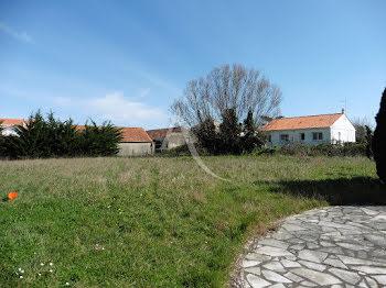 terrain à La Barre-de-Monts (85)