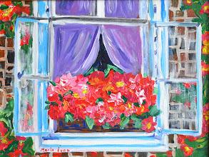 Photo: цветы в окне