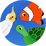 Animal Match-Up: Game for Kids file APK Free for PC, smart TV Download