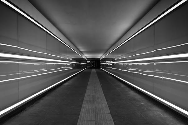 linee di Pixelnature Photo