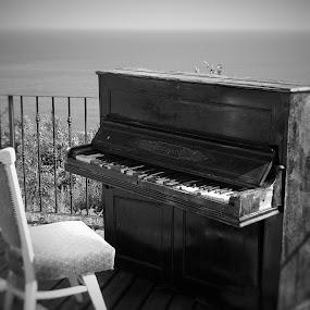 Nostalgia by Stoyan Baev - Black & White Objects & Still Life ( vintage, black and white, still life, horizon, sea, retro, misic )