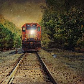 Head on by Vivian Gordon - Transportation Trains ( vigor, track, train, object, rural )