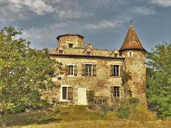 château à Castelnau-Montratier (46)