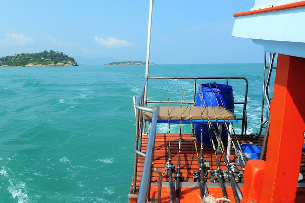 Head to the best fishing spots of Samui
