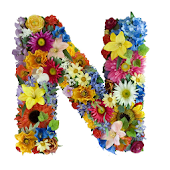 Flower Alphabet Wallpapers