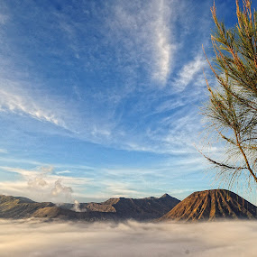 Bromo by Lian Arista - Landscapes Mountains & Hills