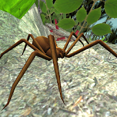 Spider Simulator
