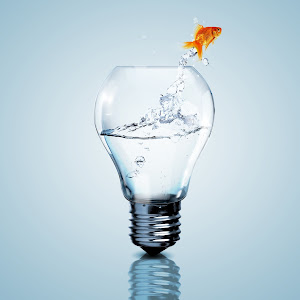 avis-pressing-idées-suggestions