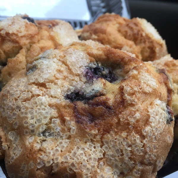 Blueberry muffin in a 4 pack