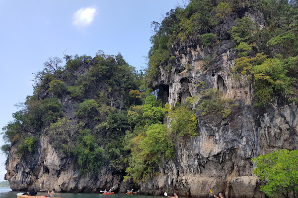 Paddle right next to almost vertical limestone cliffs