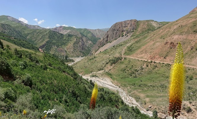 South ascent of the Saghirdasht pass.