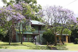 Photo: Year 2 Day 169 - A Beautiful House with Jacaranda Trees in the Garden