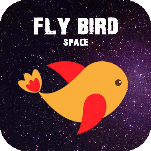 Fly Bird Space