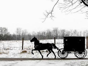 Photo: An Amish buggy heads for home during a light snowfall, Thursday, Jan. 3, 2008, near May's Lick, Ky. (AP Photo/The Ledger Independent, Terry Prather)