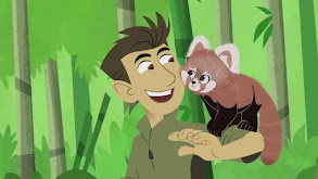 Red Panda Rescue thumbnail