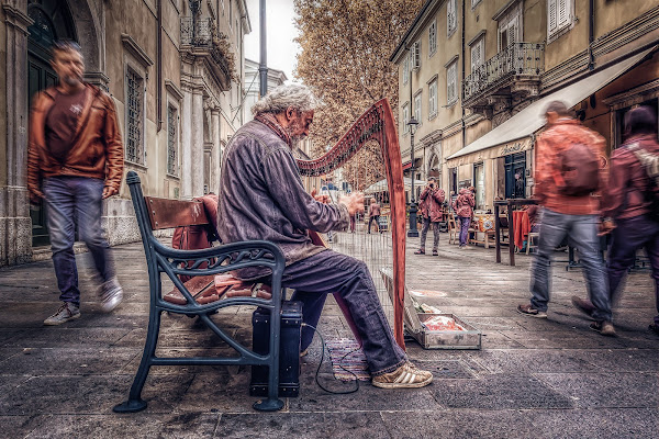 The Harpist and the City