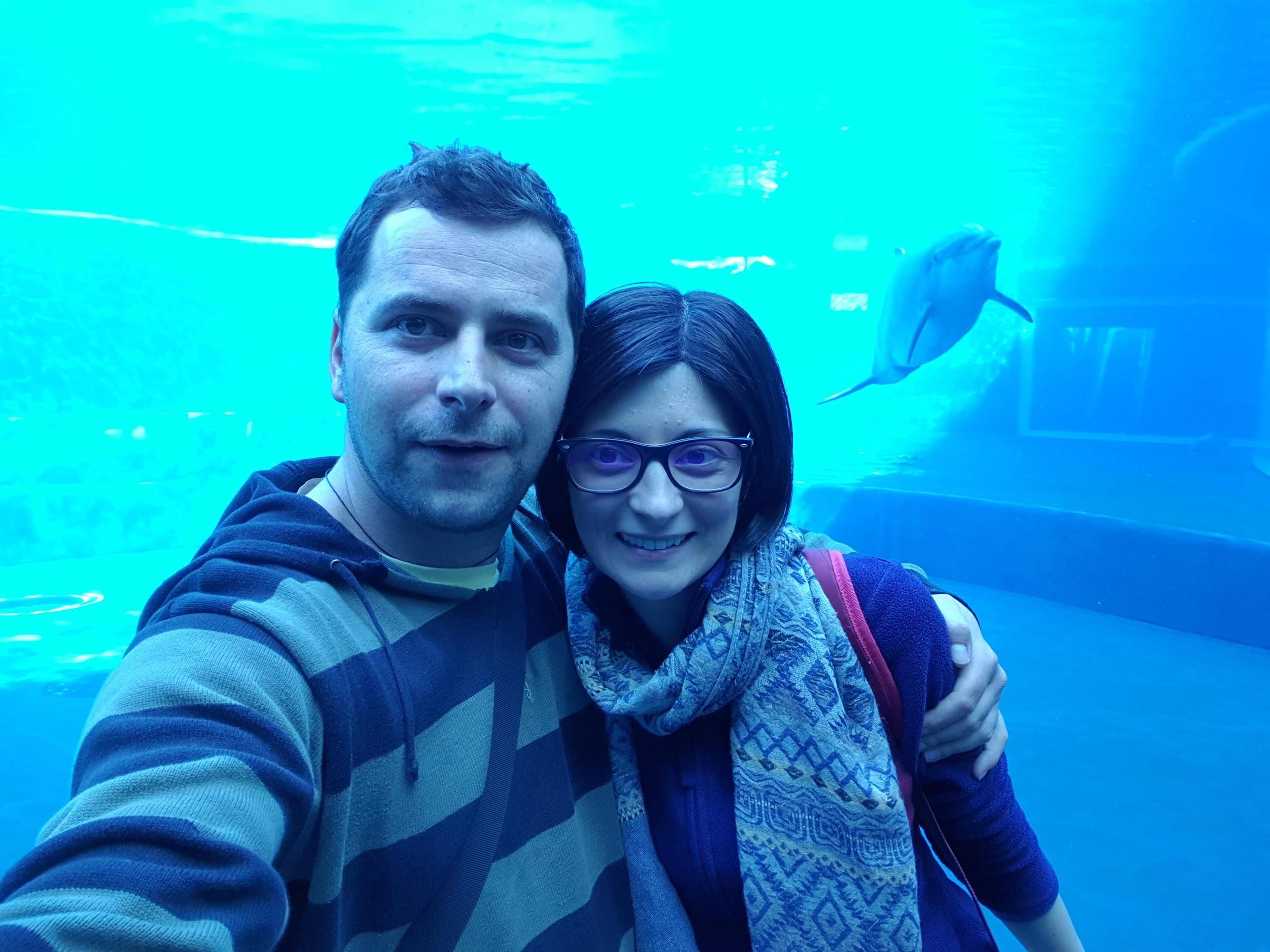 Selfie la acvariu, delfin, delfinariu, acvariul din genova, genoa aquarium, acvariul genova italia, acvariul genova harta