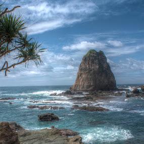 Beautiful Papuma by Mochammad Kurniawan - Landscapes Beaches ( waterscape, beach, papuma )