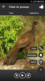 Download Canto do jacuaçu For PC Windows and Mac apk screenshot 2