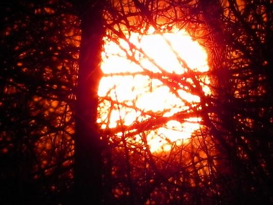 Un tramonto aggrovigliato di malikkite