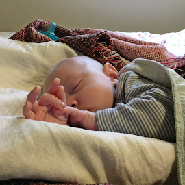 Sleeping by Sandy Stevens Krassinger - Babies & Children Babies ( hands, baby, fingers, boy, sleeping )