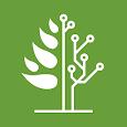 NVB icon