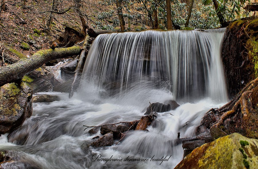Pa. Streams. by William Hamm - Typography Captioned Photos
