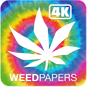 Weed Papers 4K