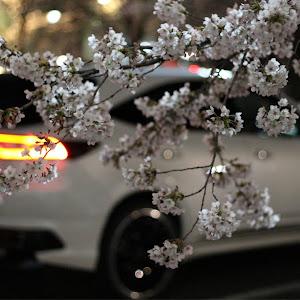 ハリアー ZSU60Wのカスタム事例画像 ひまちゃんさんの2020年04月06日22:50の投稿