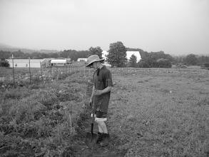 Photo: Farmer Ron