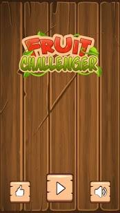 Fruit Challenger - náhled