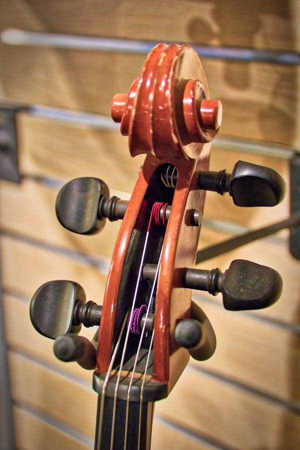 by Dragos Tranca - Artistic Objects Musical Instruments