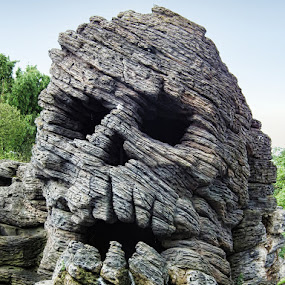 Skull by Dean Thorpe - Landscapes Caves & Formations