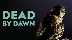 Dead by Dawn thumbnail