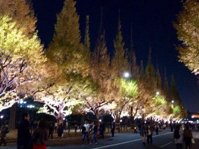 こんな「神宮外苑のいちょう並木」でした。【夜編】