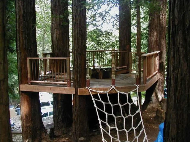 The Tree Deck