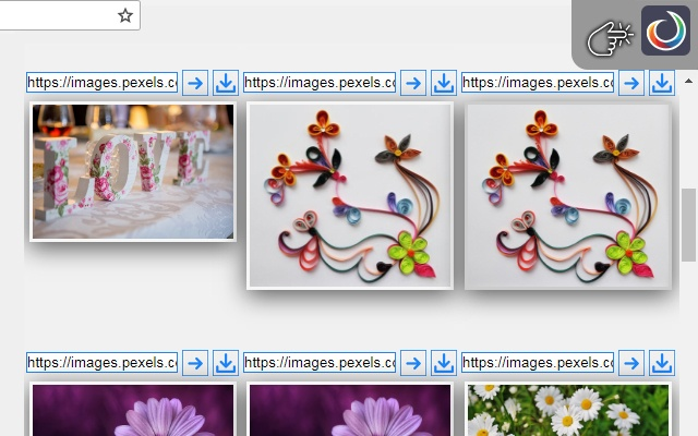 Show And Save Web Images