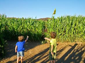 Photo: Clark and Finn Corn Maze