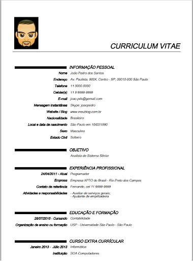 curriculum vitae profissional screenshot 3