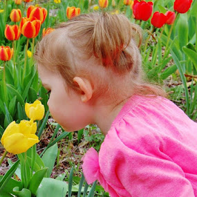 Easter Surprise by Kathlene Moore - Babies & Children Toddlers (  )