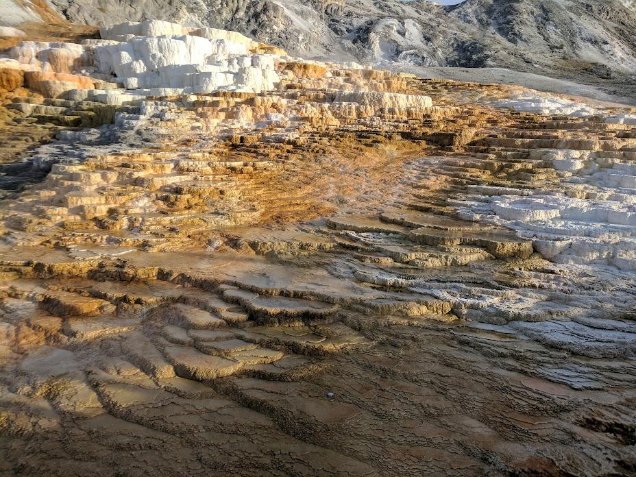 Mammoth Hot Springs - Upper Terrace