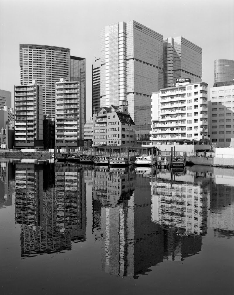 Tokyo di Hannibal Height