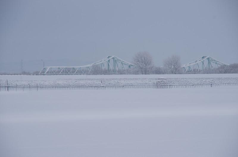 Photo: 北竜町の彩どり・12月の4