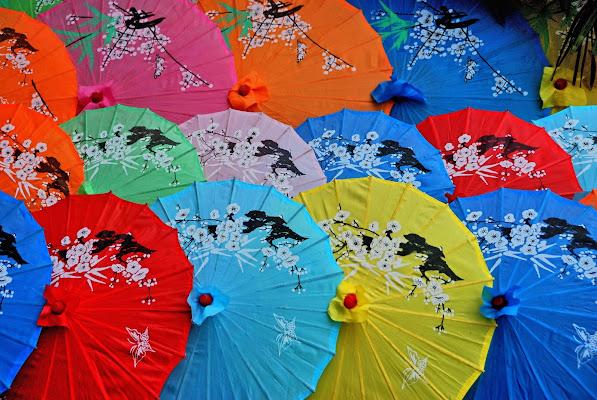 Ombrellini cinesi di vitomaso