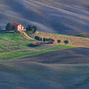 Toscana by Dominic Jacob - Landscapes Prairies, Meadows & Fields ( tree, italia, toscana, italie, bois, house, prairie, italy,  )