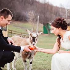 Wedding photographer Lyuda Statnik (LudmilaS). Photo of 30.01.2015