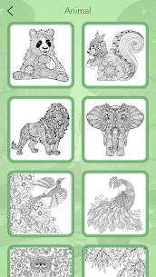Animal Coloring Book 8