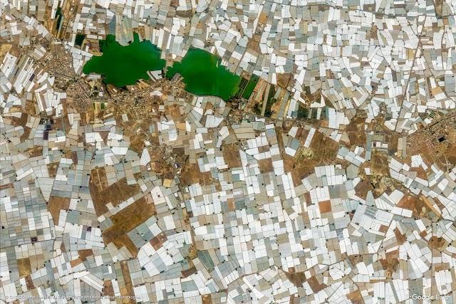 Imagen aérea del campo ejidense cubierto de plástico.