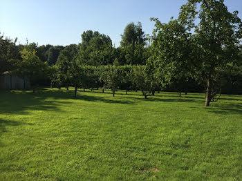 terrain à Neufchâtel-en-Bray (76)